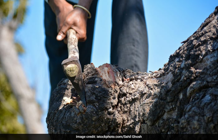 Here\'s How A Waste Warrior From Nagpur Is Saving 1,000 Trees Every Month And Preventing Stubble Burning