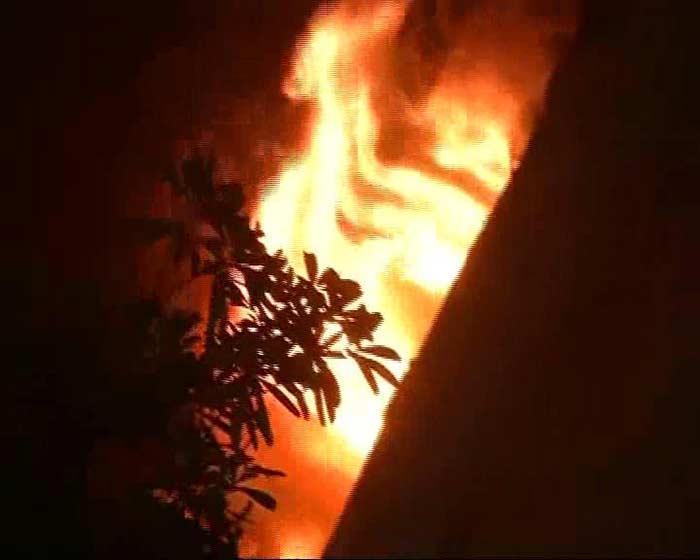 Massive Fire At Delhi\'s National Museum Of National History: Pics