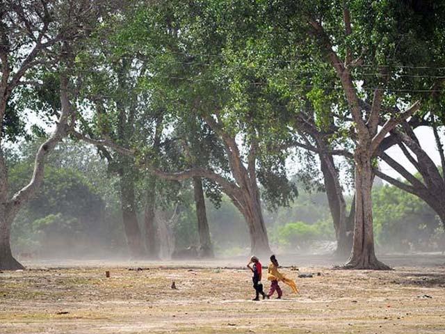 Photo : Heat Wave Intensifies; Over 700 Killed in Telangana, Andhra Pradesh