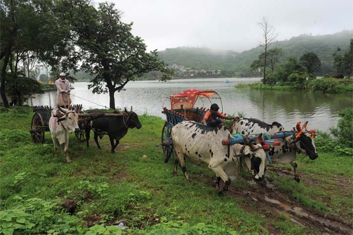 The United Nations designates Western Ghats as world heritage site