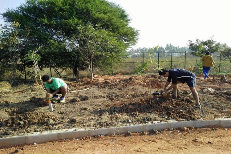 Citizen-Led Plantation Drive Brings Bengaluru\'s Jakkur Lake Back To Life