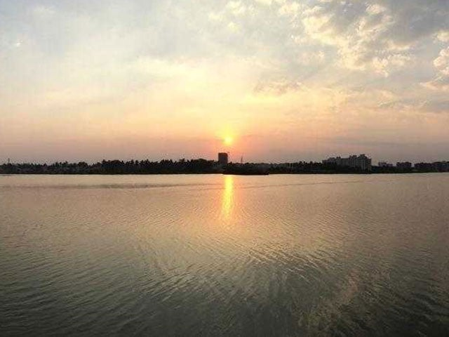 Photo : Citizen-Led Plantation Drive Brings Bengaluru's Jakkur Lake Back To Life