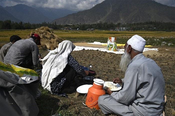 Farmers eat lunch on a rice field in Kangan, some 22 Km northeast of Srinagar.