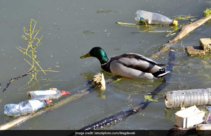 Photo : World Environment Day 2018: Five Stark Facts About Plastic Pollution