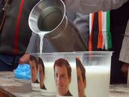 Photo : Now 'Rahul Milk' to counter Narendra Modi's 'Chai pe Charcha' campaign