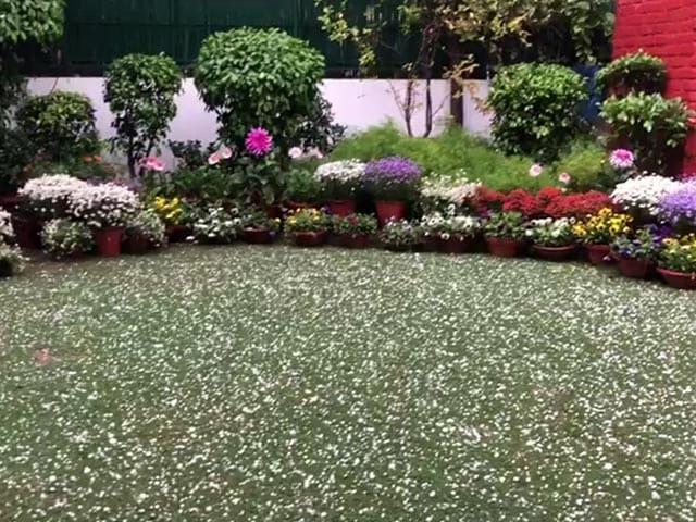 तस्वीरें: दिल्ली में तेज़ बारिश के साथ पड़े ओले, सुहावना हुआ मौसम