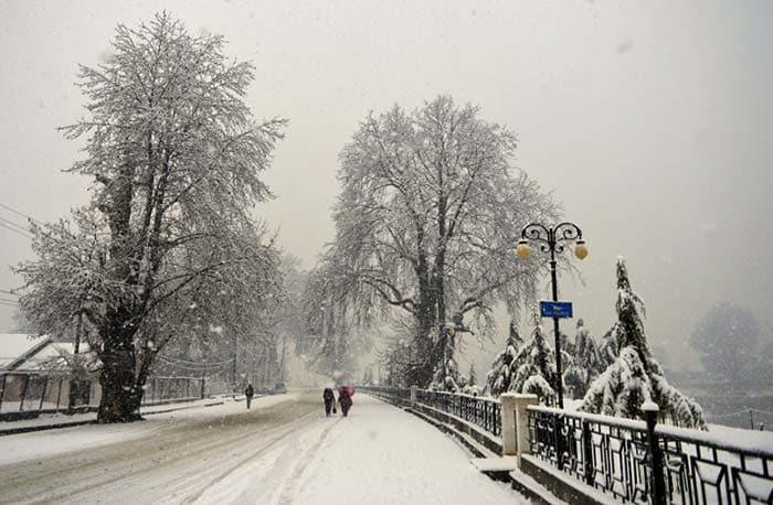 Heavy Snowfall Leaves Kashmir And Shimla Whitewashed