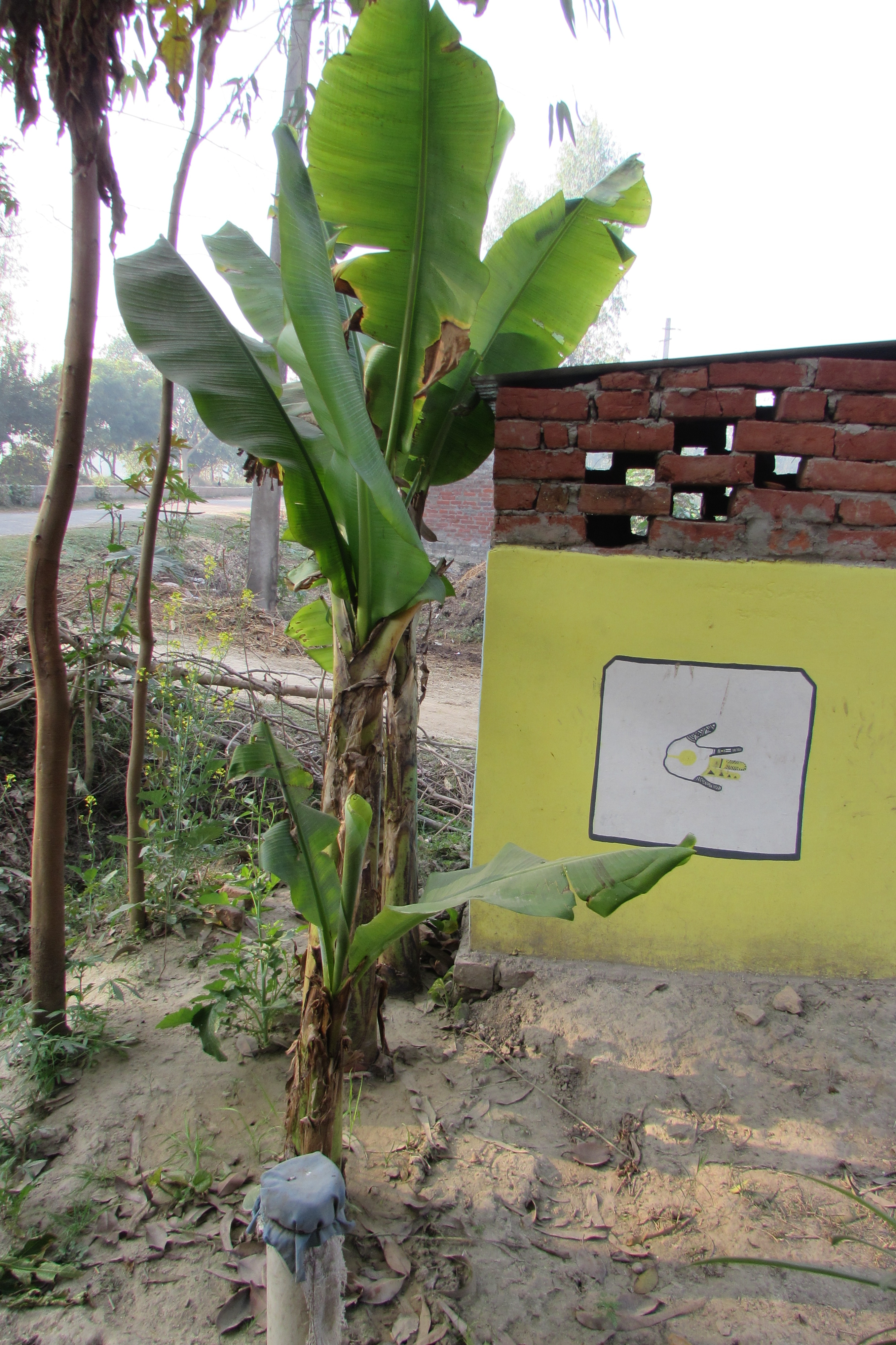 This Is How An American Woman Is Challenging Open Defecation In Rural India