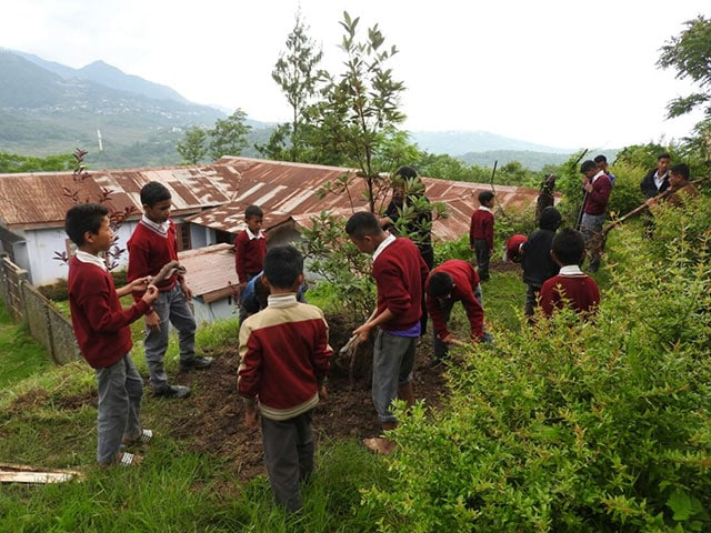 Photo : These Nagaland School Children Grow Organic Vegetables For Their Mid-Day Meals