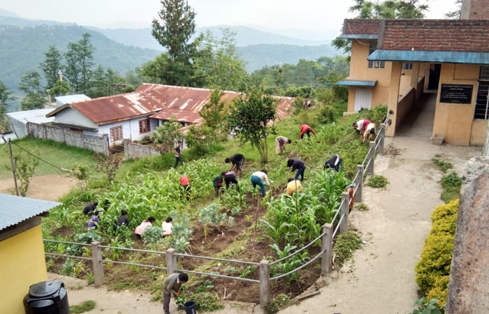 These Nagaland School Children Grow Organic Vegetables For Their Mid-Day Meals