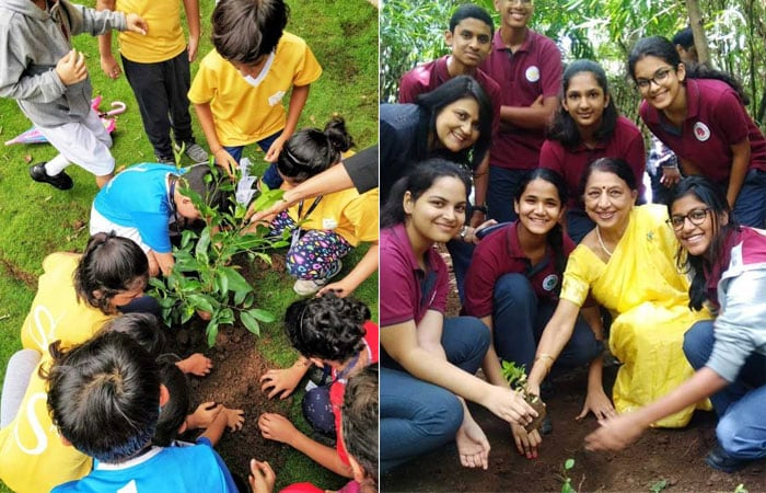 Tree Plantation And Clean Up Drives Organised By Schools For The Banega Swachh India Campaign