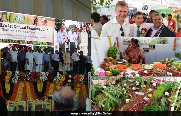 World Environment Day 2018: Here Is How India Is Celebrating