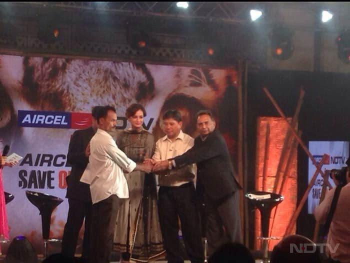 Celebrating World Tiger Day