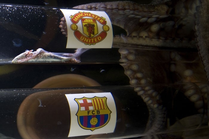 Octopus tips Man United to beat Barcelona