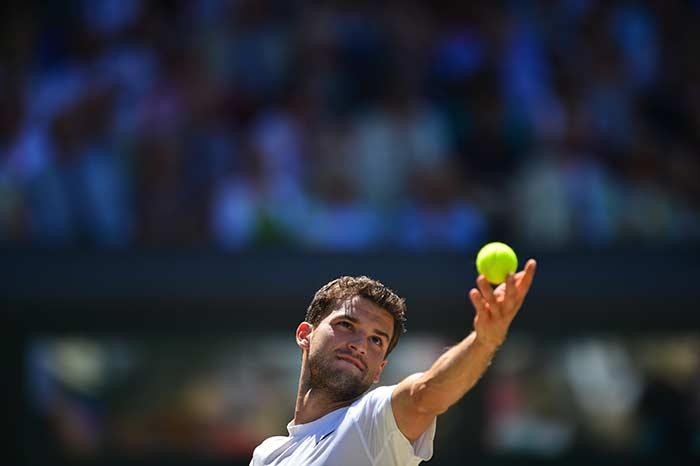 Wimbledon: Federer Crushes Raonic to Set Up Djokovic Final