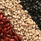Here's Why You Should Add More Beans To Your Diet