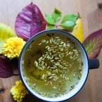 10 Fennel Tea Benefits You Must Know