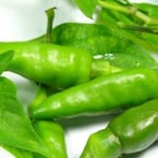Here's Why Dhabas Soak Green Chillies In Vinegar-Water Solution