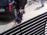Video : Caught on Camera