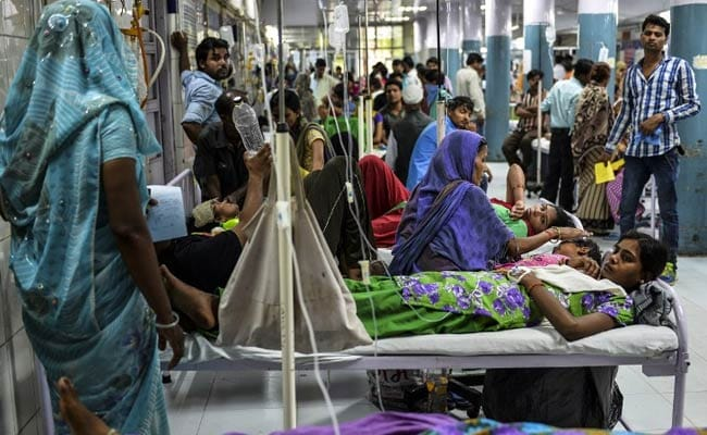Opinion: How Delhi Government Has Battled Dengue With Startling Success