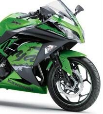 Kawasaki Ninja 300 Launched With A Massive Price Cut. Gets ABS Too