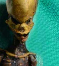 This Tiny Skeleton Might Look Like An Alien, Her Genes Tell Another Story