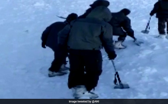10 Trapped After Avalanche In Ladakh, Search Operation Underway: Report