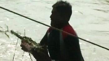Videos : इसी बैट से कुचला गया भंवरी का सिर