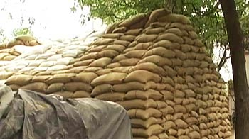 Video : Grain worth 3 crore, meant for poor, missing from Allahabad godown