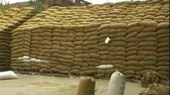 Video : तीन करोड़ का अनाज खा गए चूहे!