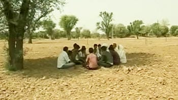 Video : Shadow of drought over Rajasthan; farmers on tenterhooks