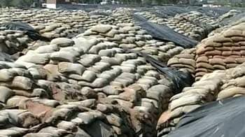 Video : In Punjab, government pays high price to buy foodgrain from private mills
