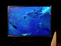 Toshiba Regza RZ1 3D TV