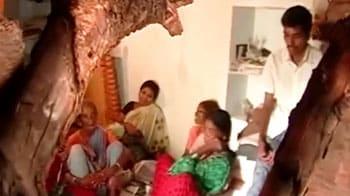 Video : Power trips farmers' lives
