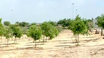 Video : Green revolution in deserts of Israel