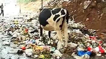 Video : After the rain, garbage and muck on Bangalore streets