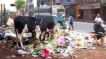 Video : Bangalore garbage crisis: Karnataka High Court questions municipal authority