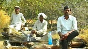 Video : Madhya Pradesh land row: Farmers sit on pyres, threaten mass suicide