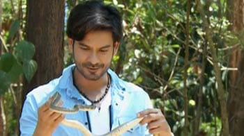 Video : Keith visits a snake park in Kerala