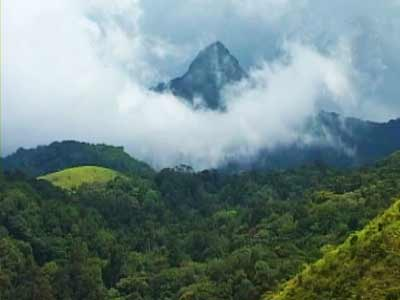 Video : Seven Wonders of India: Kerala's Silent Valley National Park (Aired: December 2008)