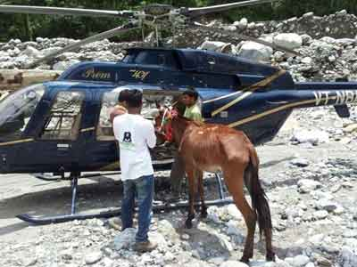 Video : In Uttarakhand, a mule is rescued after 27 days in a daring operation