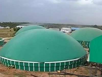 Video : Tamil Nadu firm produces electricity using poultry waste