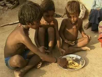 Video : Food Security Bill may not achieve much, say activists