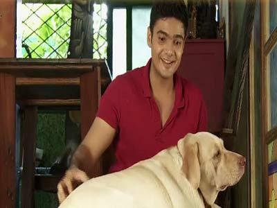 Video : Paras plays around with the ticklish dog