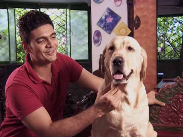 Video : Paras meets a family of fervent animal lovers in Mumbai