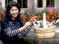 Video: Neha Dixit unveils Switzerland's best kept secrets
