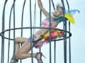 Video: Hunt For The Kingfisher Calendar Girl 2013: A bird and a cage