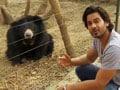 Video : Keith meets 255 rescued bears at Wildlife SOS