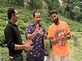 Video: Rocky & Mayur enjoy freshly brewed tea amidst tea gardens