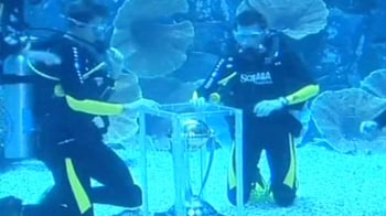 Video : When the World Cup Trophy swam with sharks!